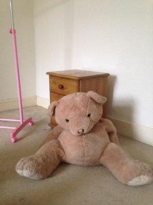 house teddy 1